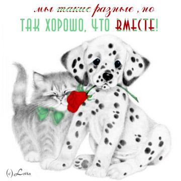 http://forum.pushkino.org/uploads/post-51-1164661435.jpg