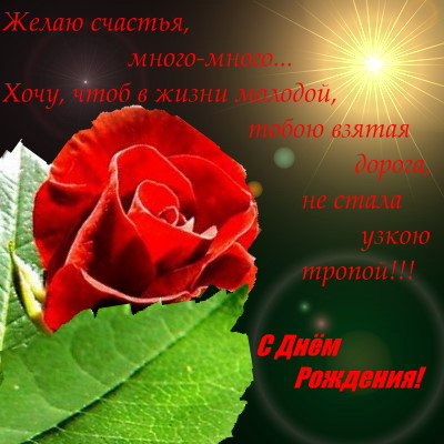 post-51-1178511027.jpg