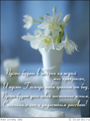 post-51-1224831157.jpg