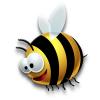 mollybee