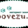 Zoovezu